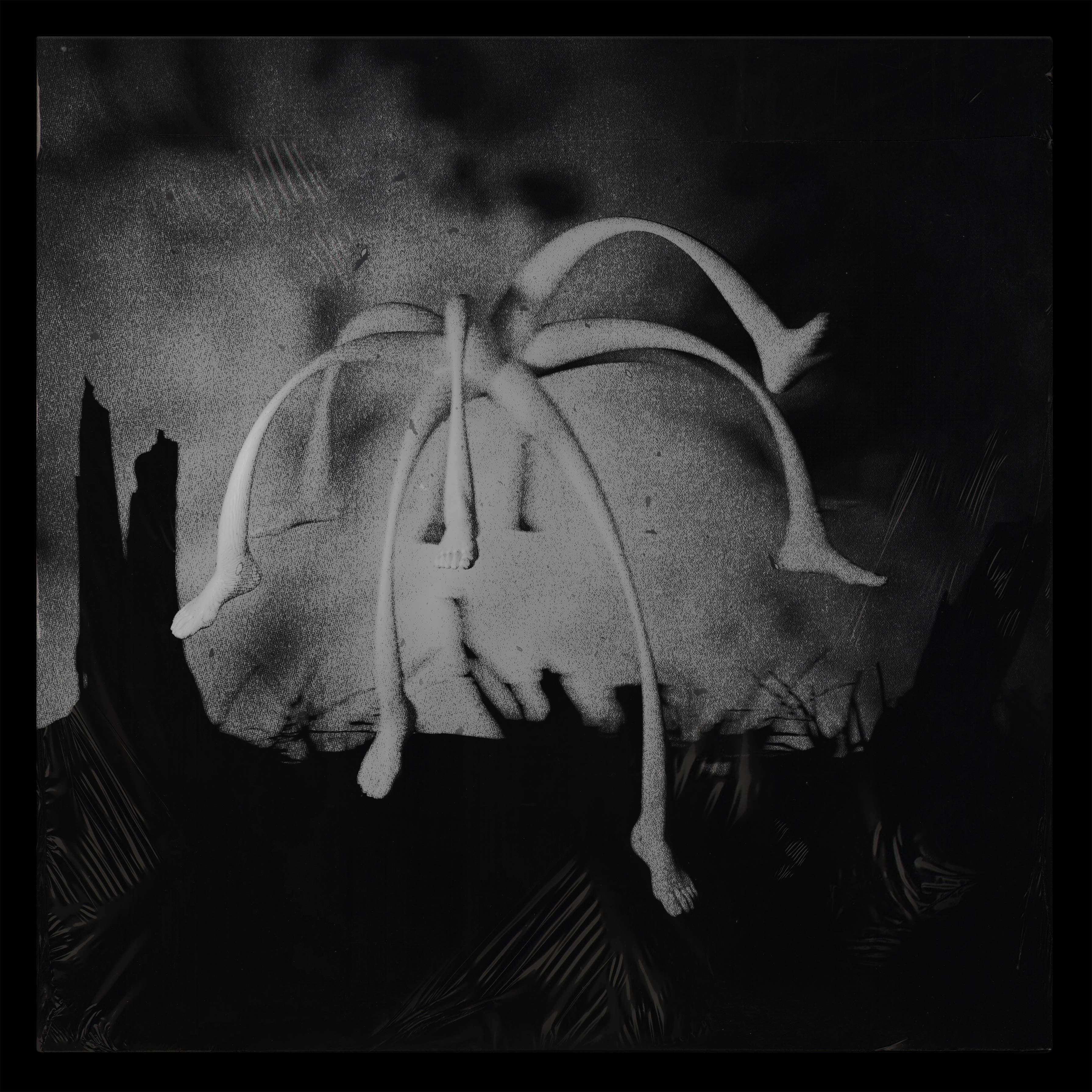 House of Reptile - Album Cover
