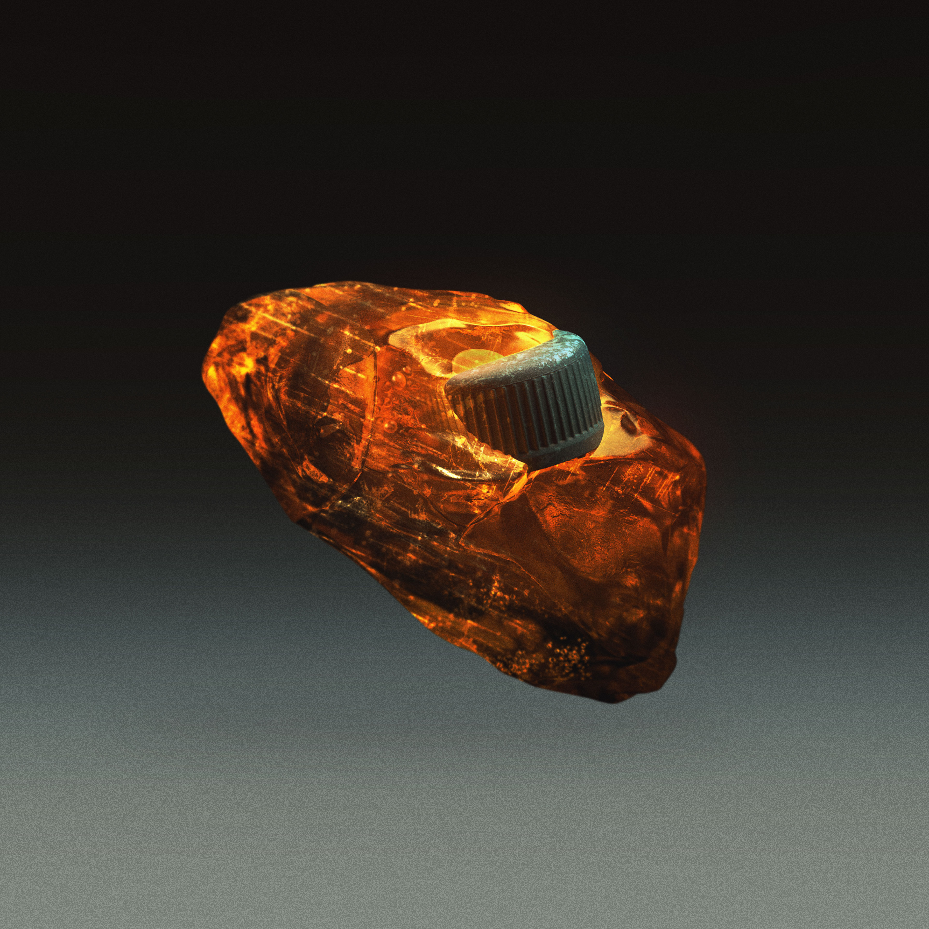Future Fossils - Amber