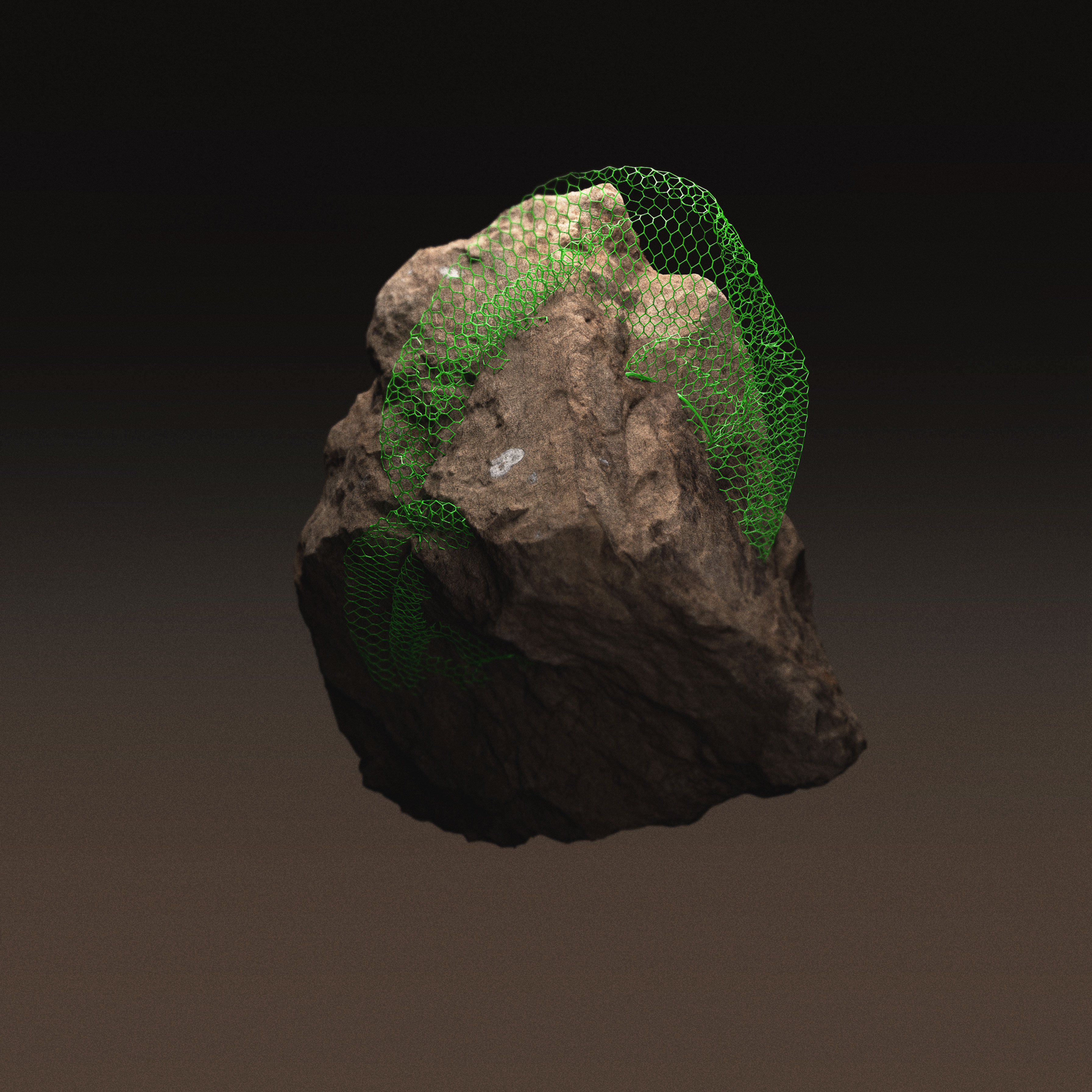 Future Fossils - Sand Rock