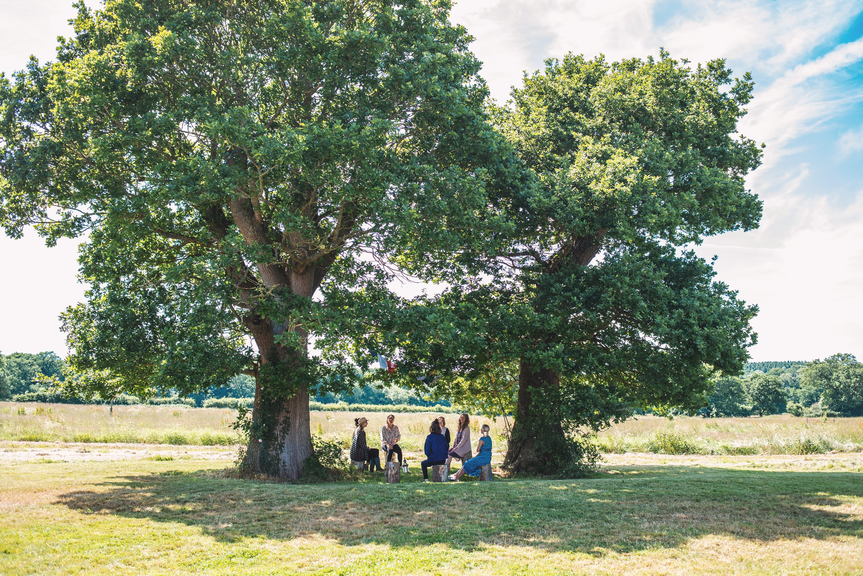 Group of women sat in a circle under oak trees
