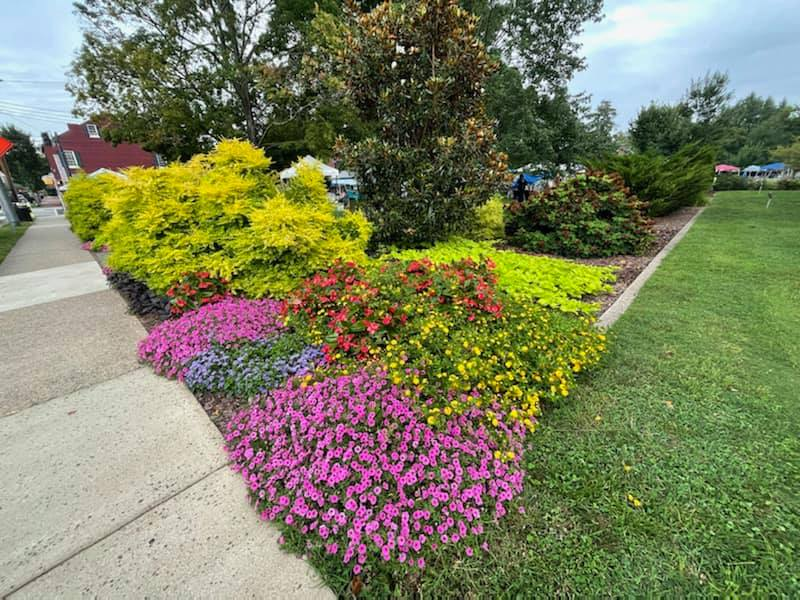 The flowers at Hurkamp Park are gorgeous this year thanks to Chip Taylor and his #LoveScrub crew