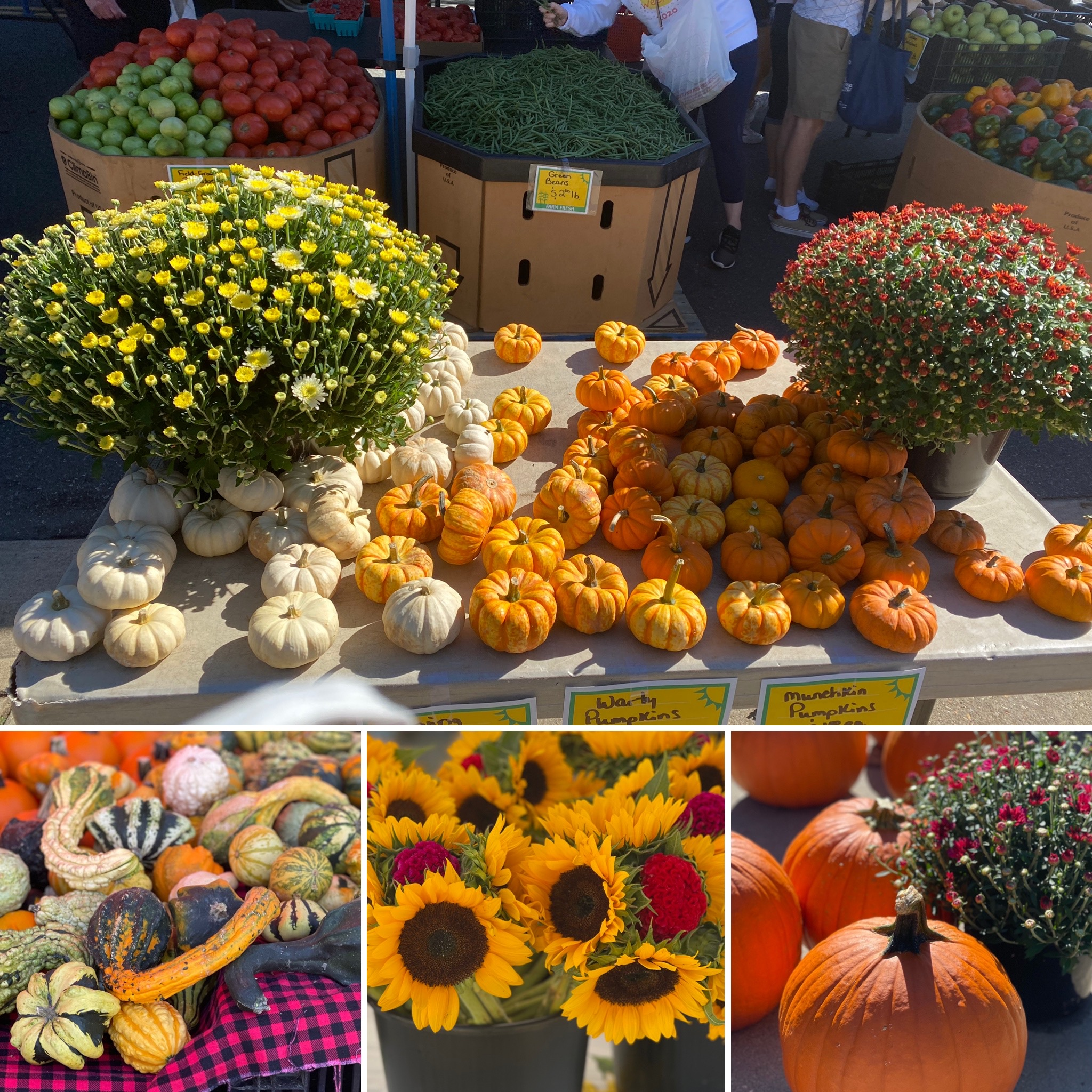 There can be no doubt that it's Autumn at the Fredericksburg Farmers Market.