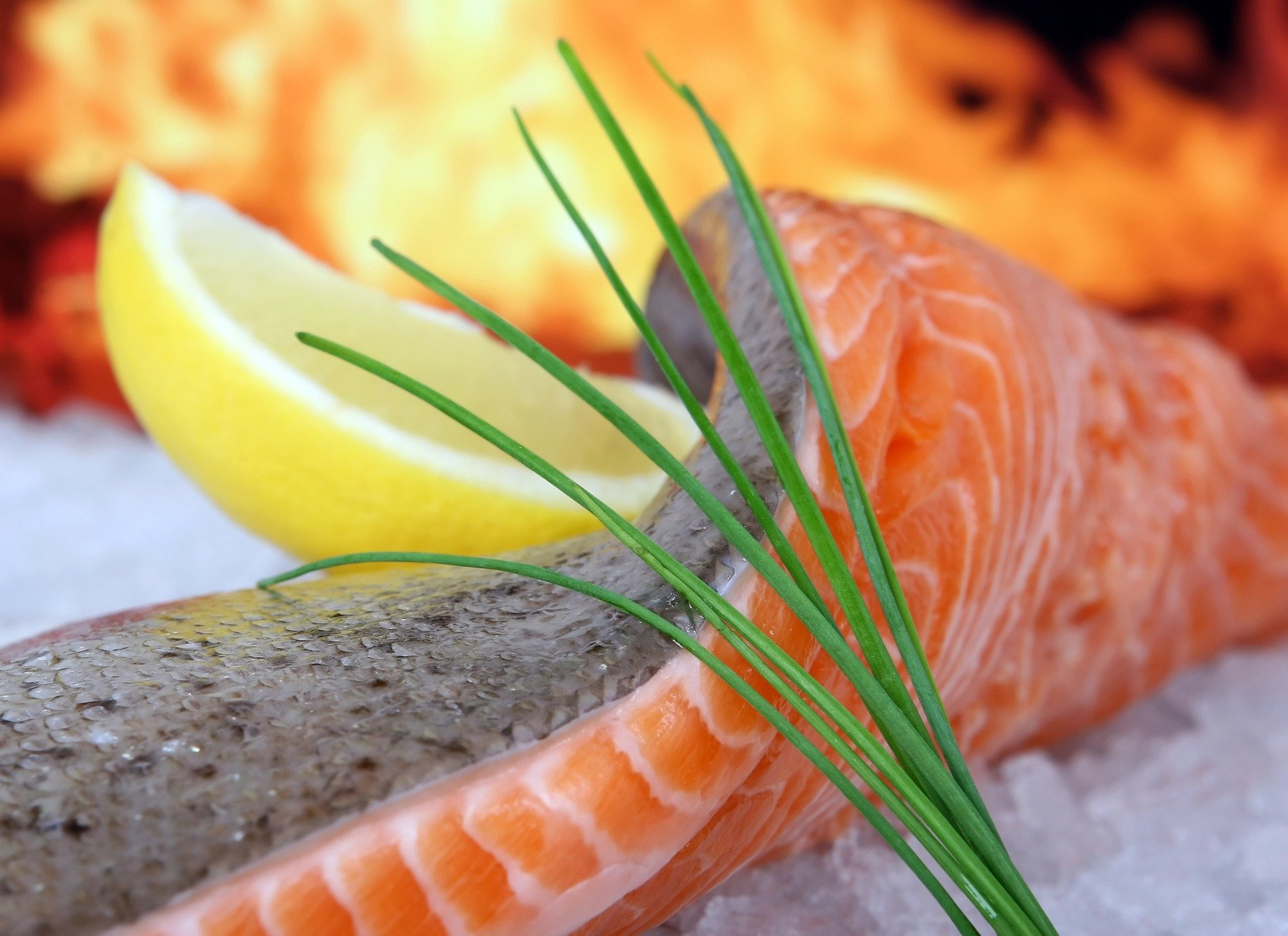Fisch und Krustentiere - Vegetarisch und Vegan