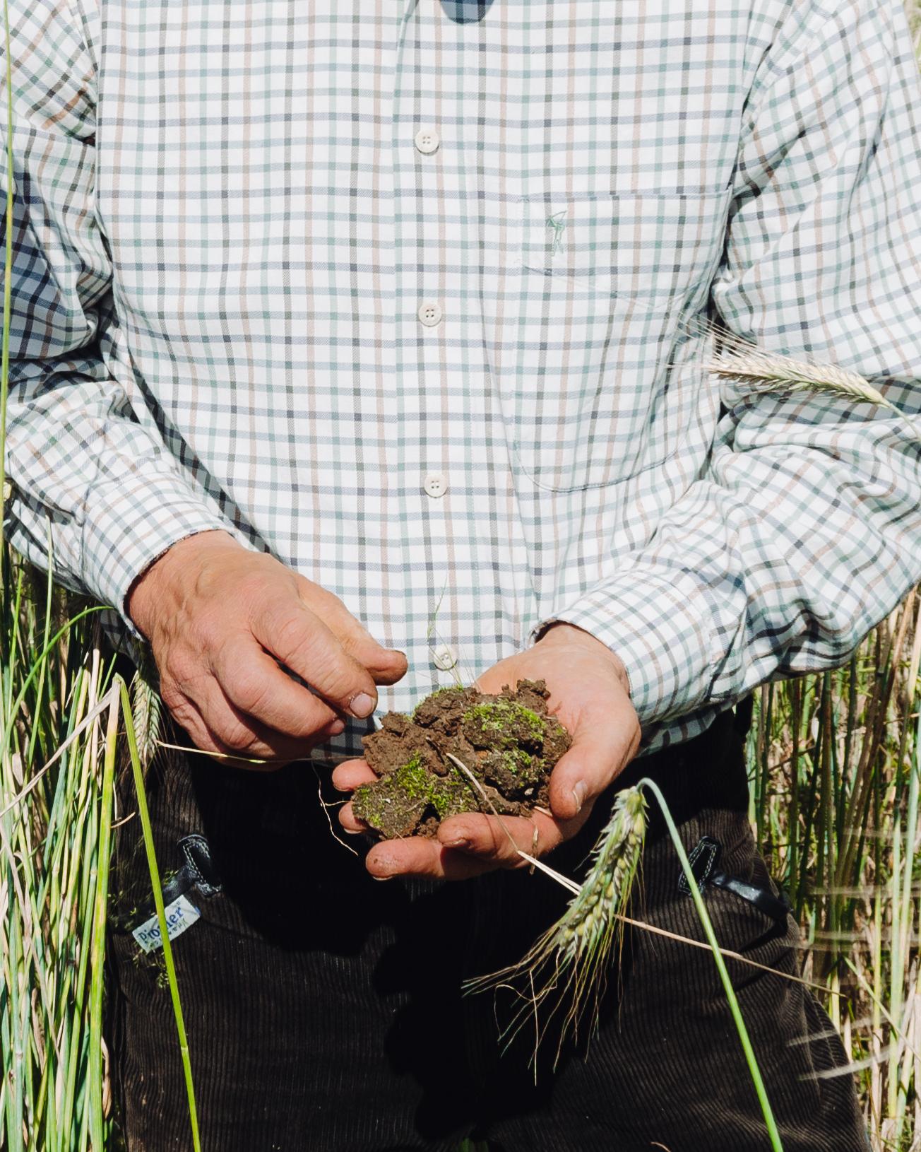Der Bauer überprüft die Qualität des Bodens.