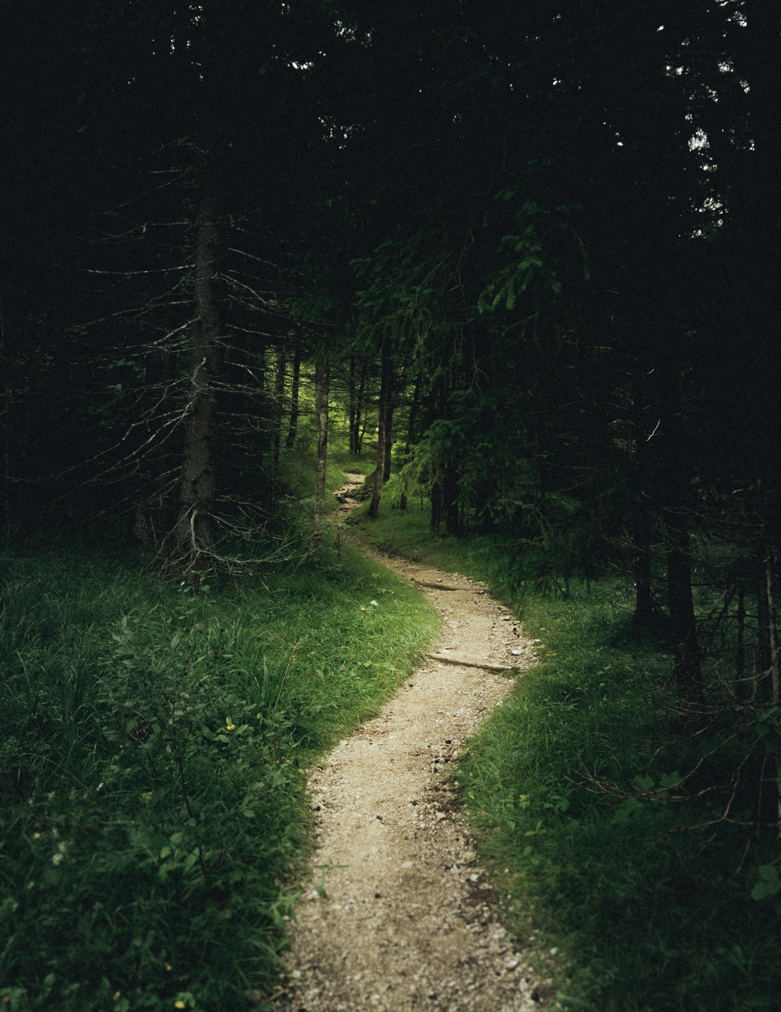 Wanderweg im Karwendelgebirge
