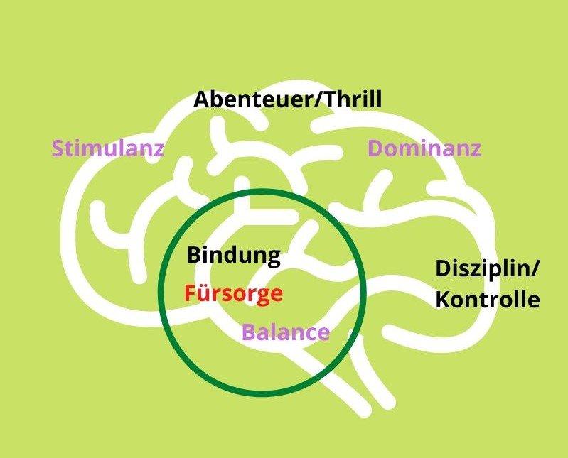Emotionssysteme bestimmen unser Fühlen, Denken und Handeln.