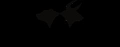 Betashares logo