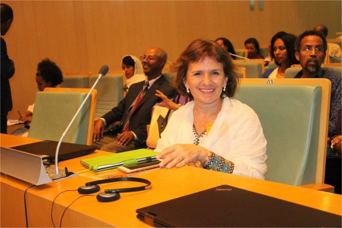 Representative of Full-circle Learning ready to speak at the African Union.