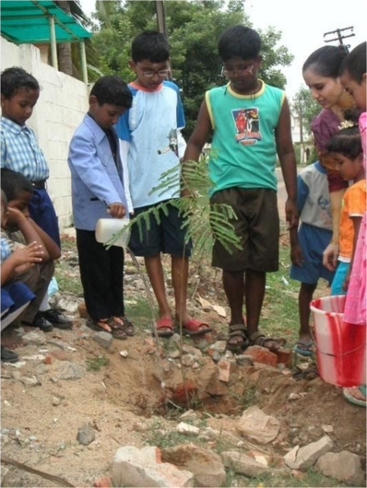 Students standing around a newly planted tree