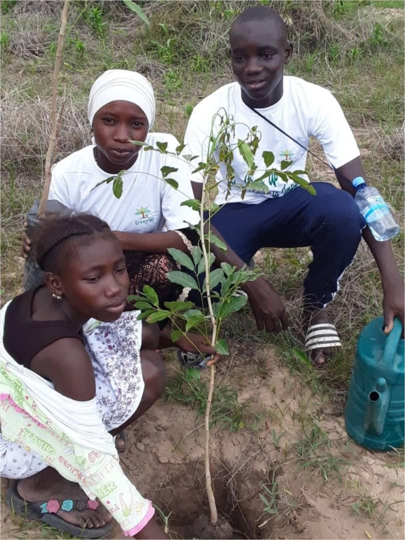 Students planting a new tree