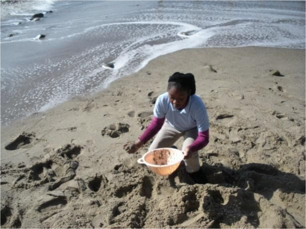 Student at the beach gathering sand for a project.