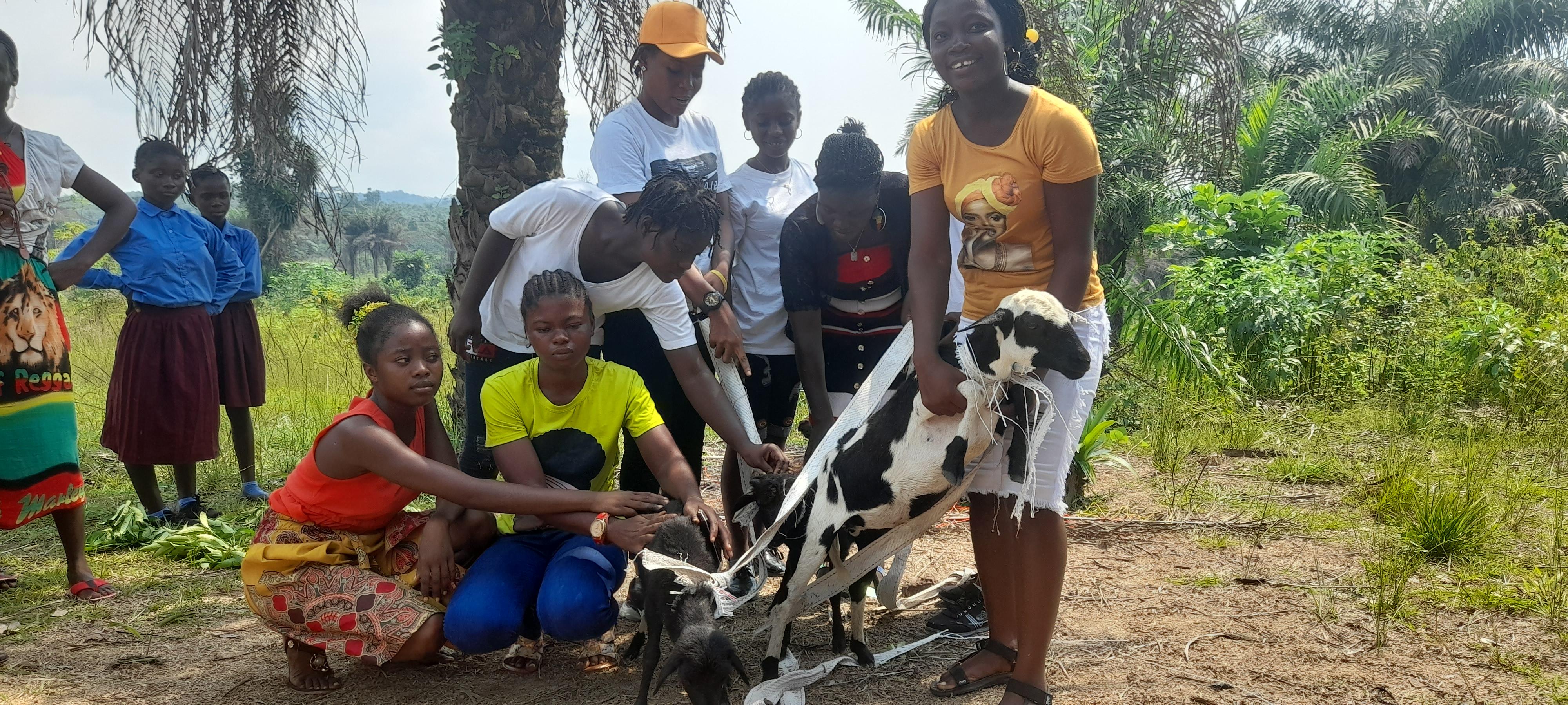 Girls learn how to help raise sheep.