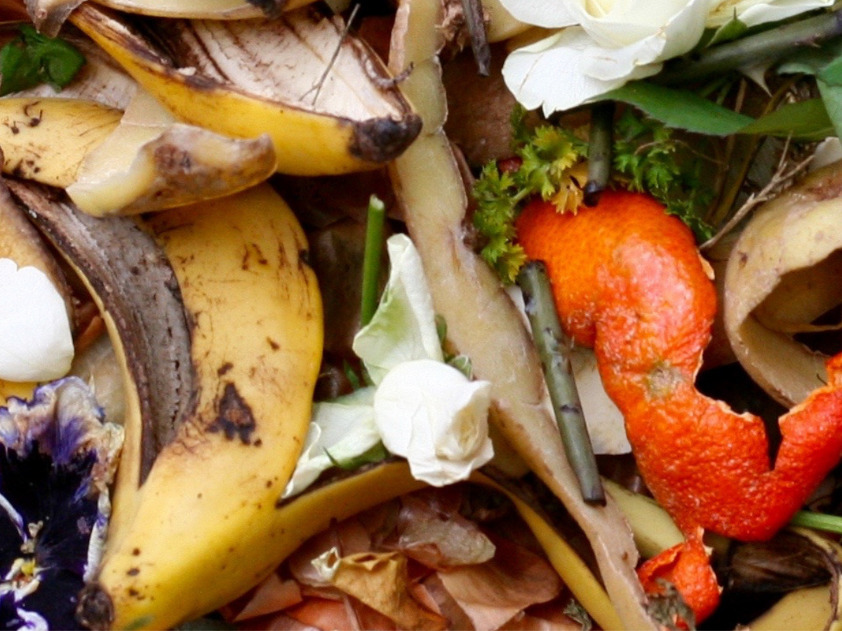 Ways To Have A Net Zero Kitchen - How To Make Use Of All Your Food Scraps