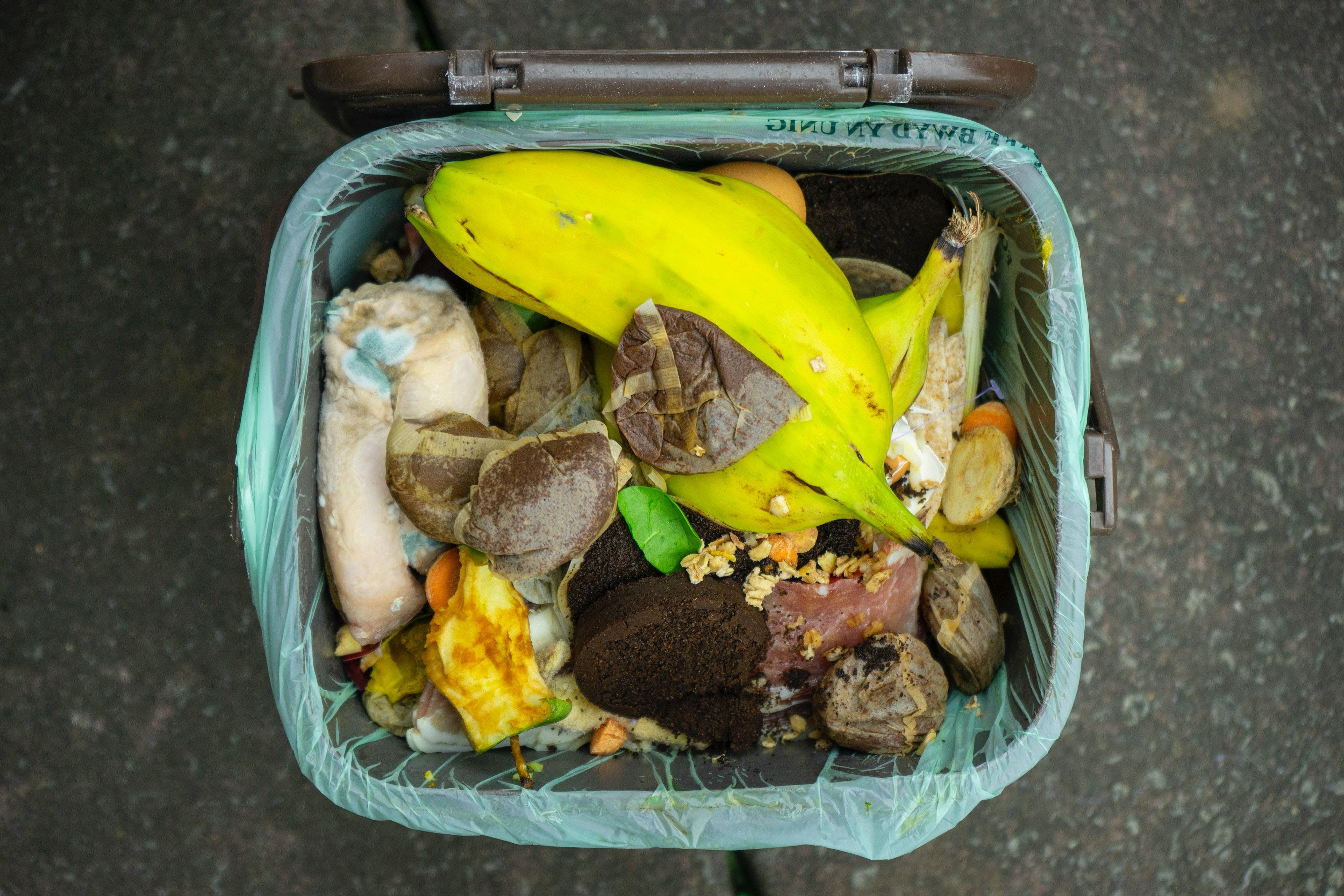 Le gaspillage alimentaire : problèmes et enjeux