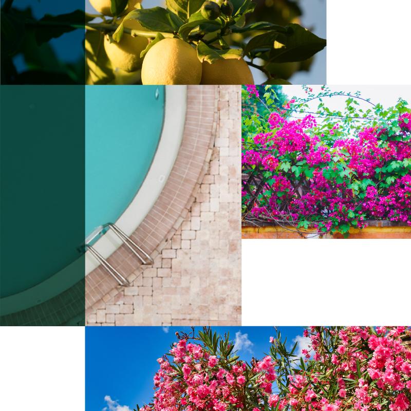 Green Villas Gardone Riviera elementi giardino