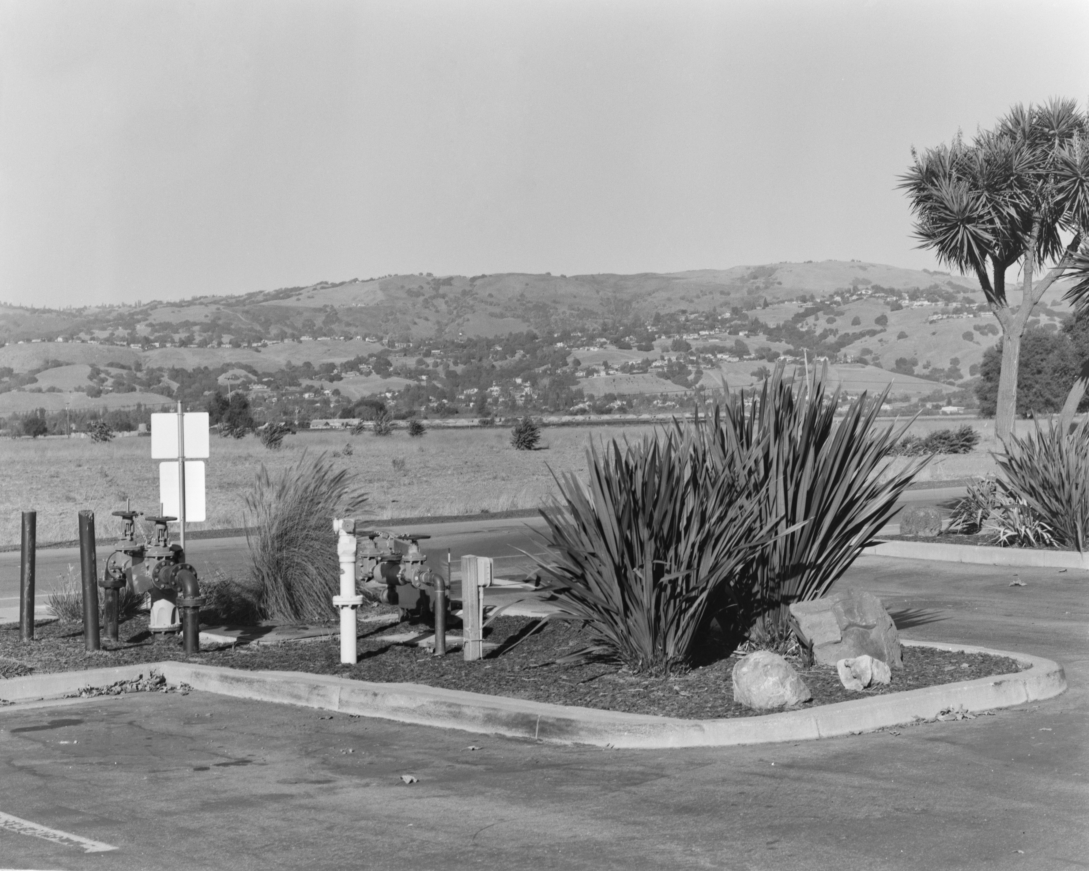 A black-and-white photograph of the planter curb of a parking lot. It contains several plants, decorative rocks, pipes, valves, and a road sign.The background is a dry field of grass and a landscape of rolling hills, dotted with houses and trees.