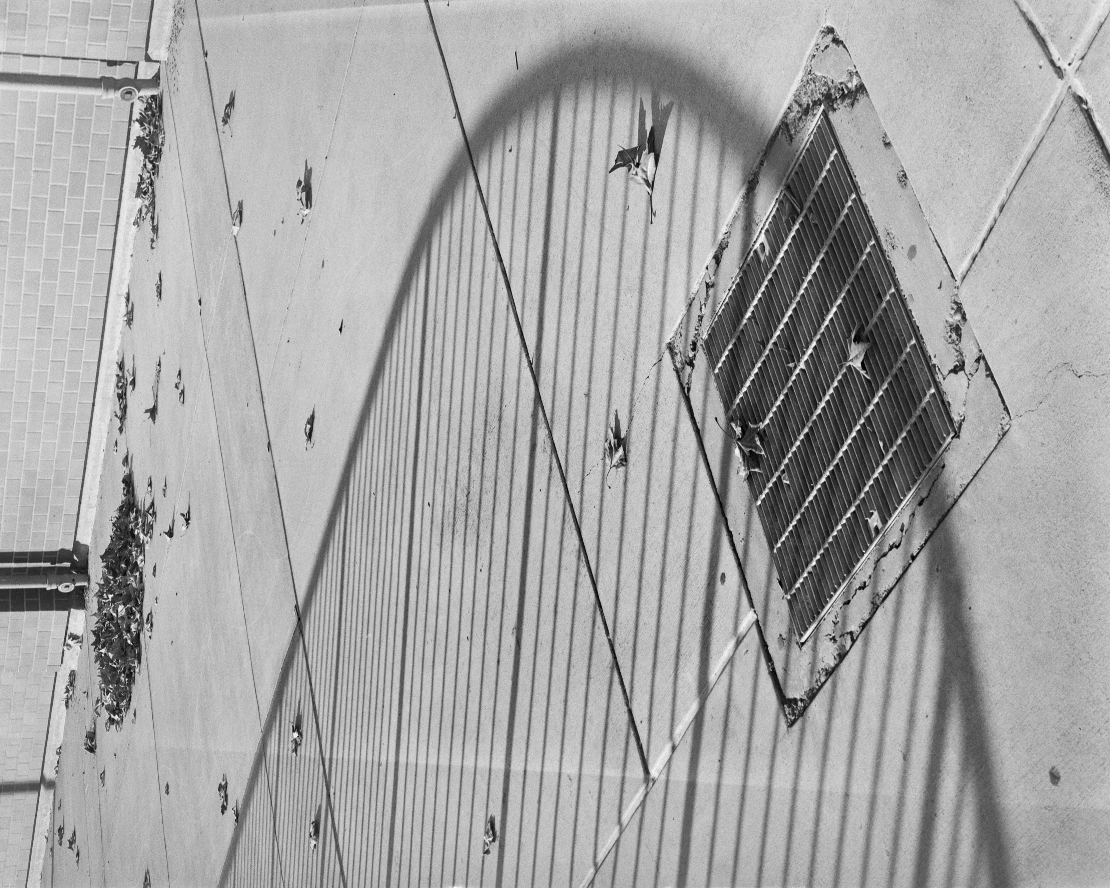 A black-and-white photograph of abstract shapes. Closer inspection reveals that the photograph has been rotated by 90 degrees, and depicts is a metal drain gate set in the middle of a cement-paved area. The shadow of a handrailing drapes across the image, and a pile of leaves sits in the background.
