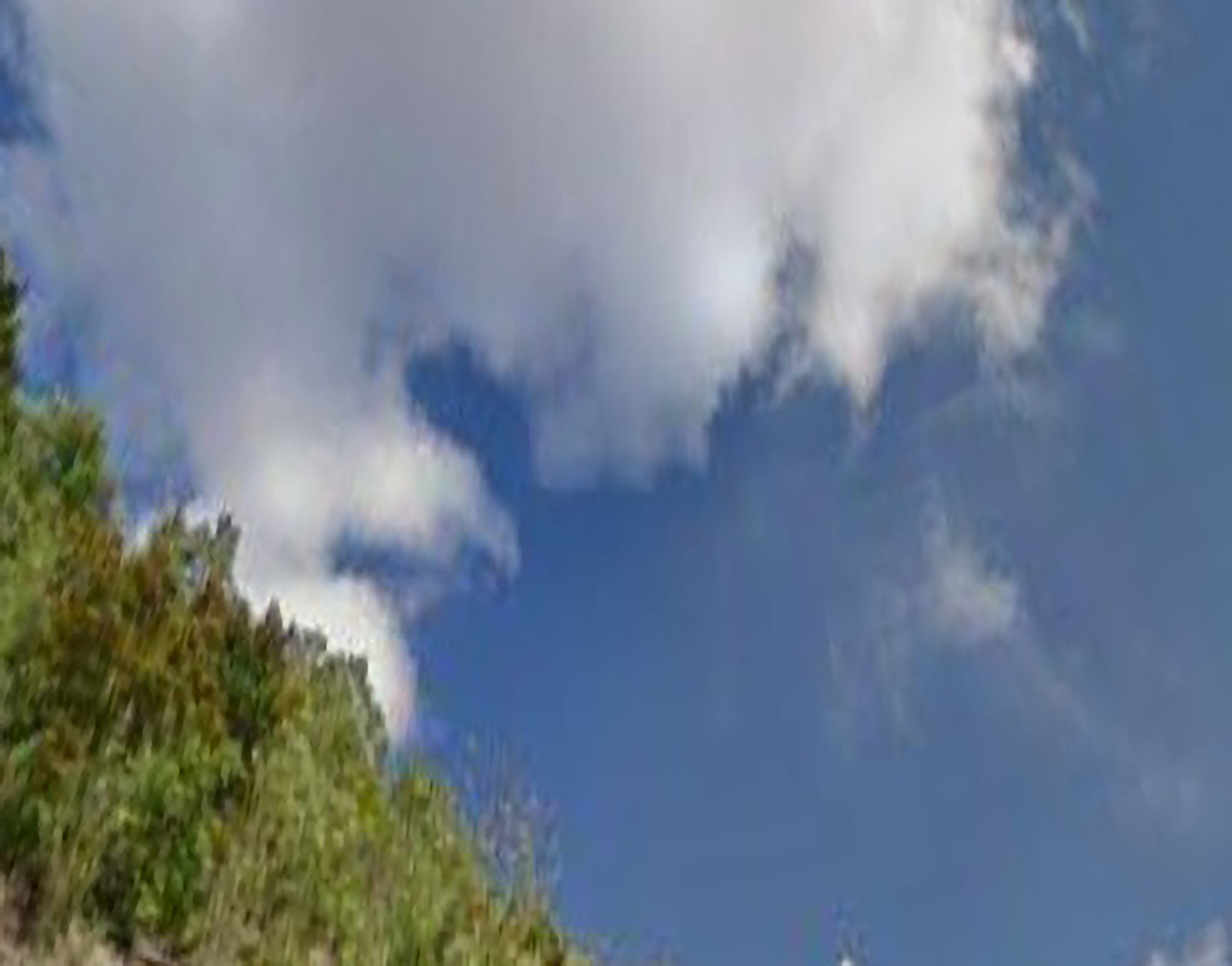 An abstract photograph of clouds against a blue sky. A lush green hill covered in trees takes up the bottom-left corner.