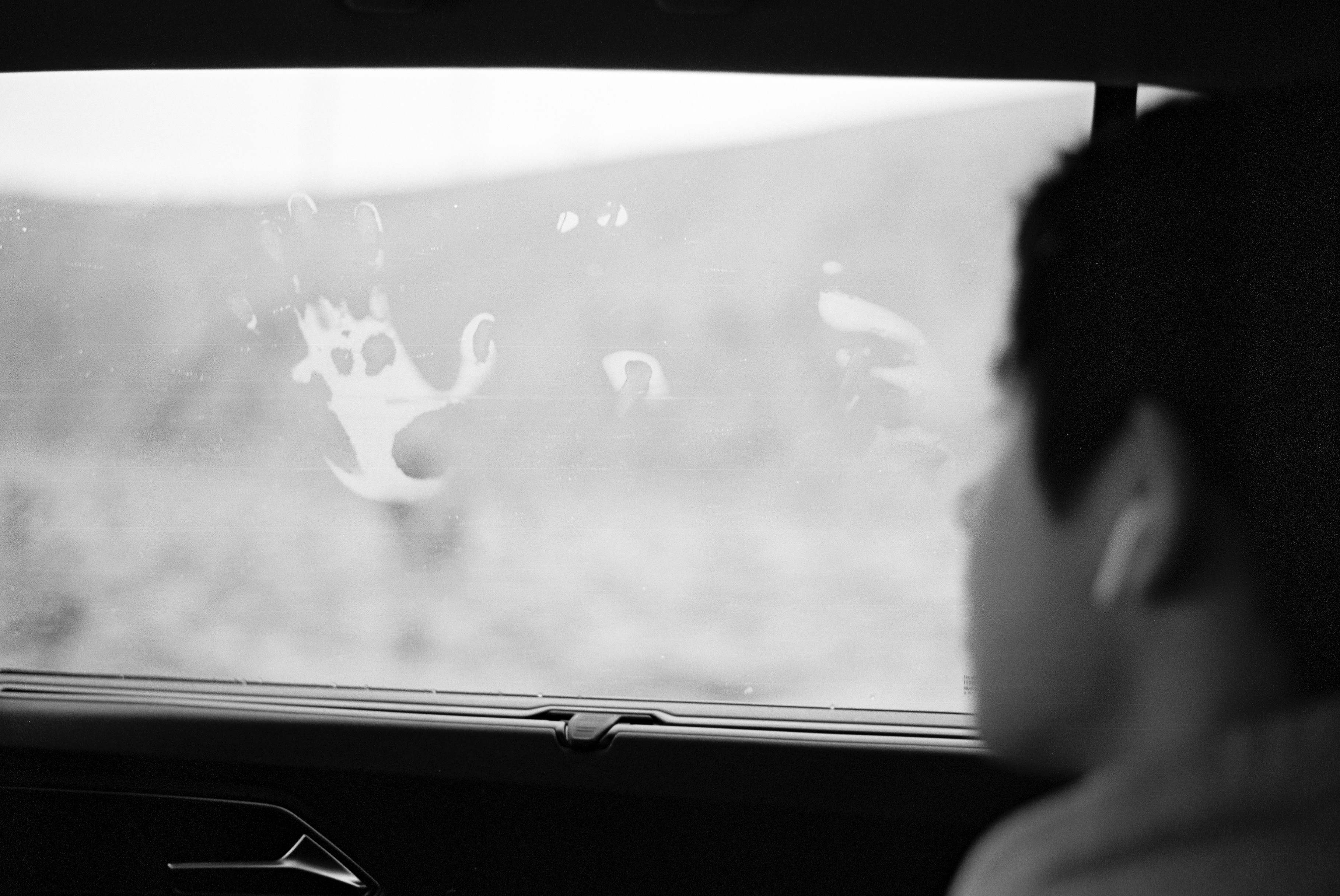 A boy sits in the back seat of a car, looking out the window to a foggy hillside. The window holds the remnants of a handprint formed from condensation.
