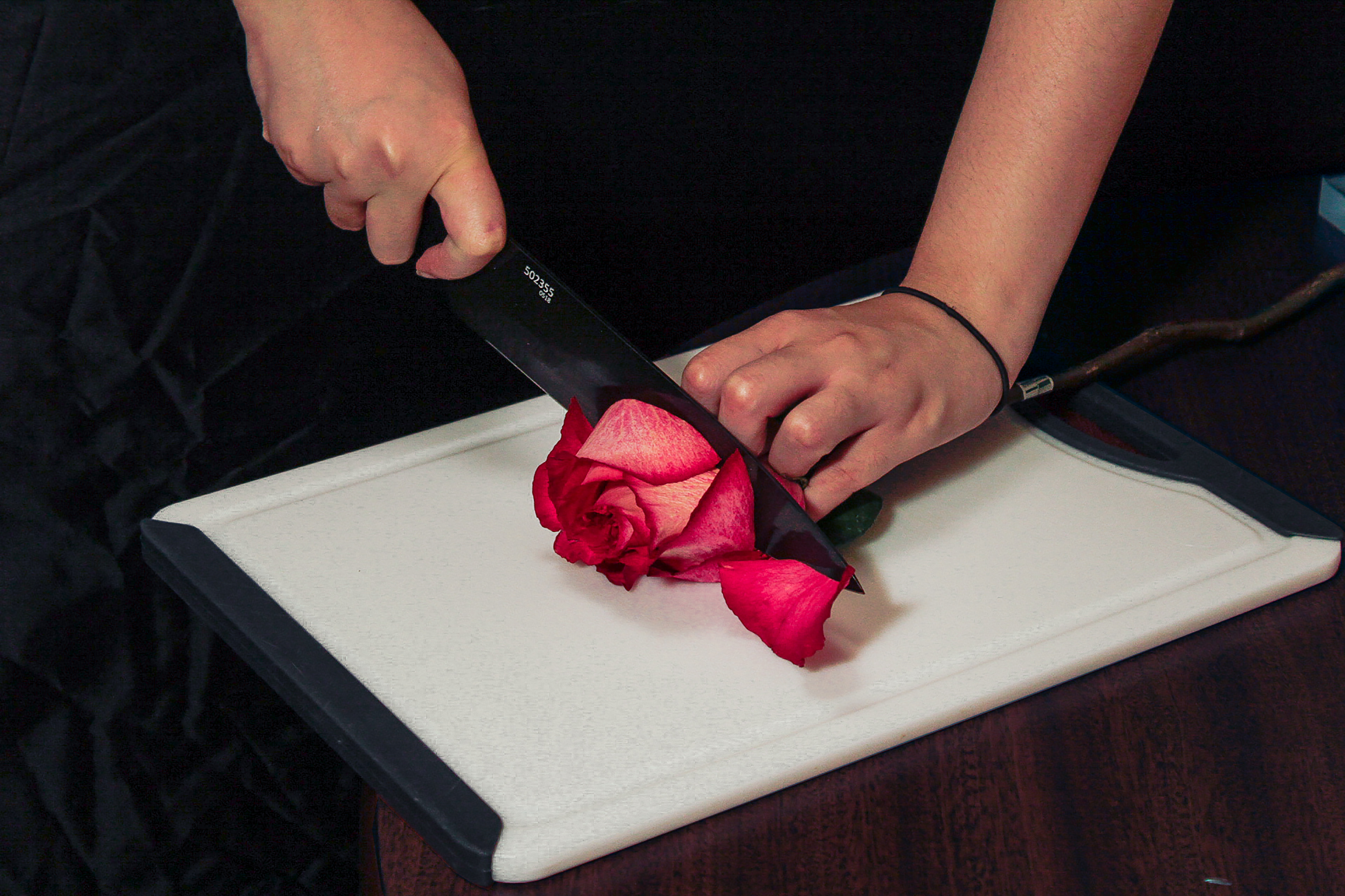 Two hands use a onyx chef's knife to cut a large pink-red rose in half.
