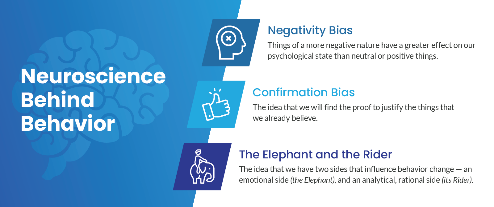 3 cognitive biases