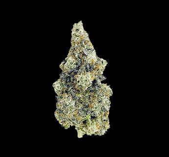 Cherry Punch Dry cannabis bud
