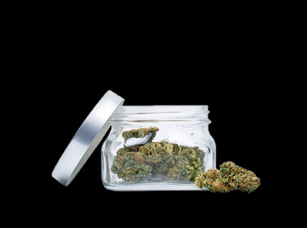 Gelato Mints glass container full of dry cannabis flowers