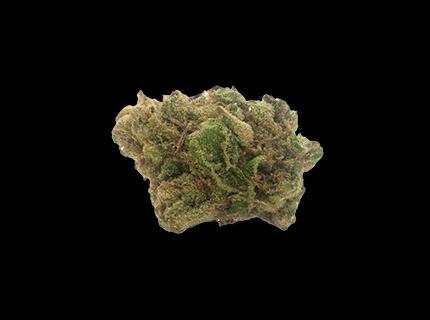 Pedro's Sweet Sativa dry cannabis bud