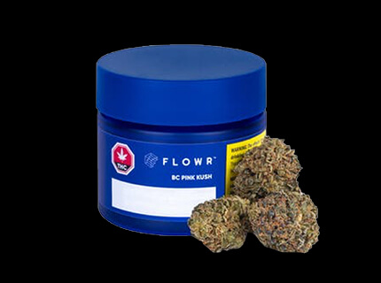 BC Pink Kush blue container with dry cannabis flower