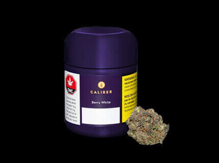 Berrywhite purple cannabis container