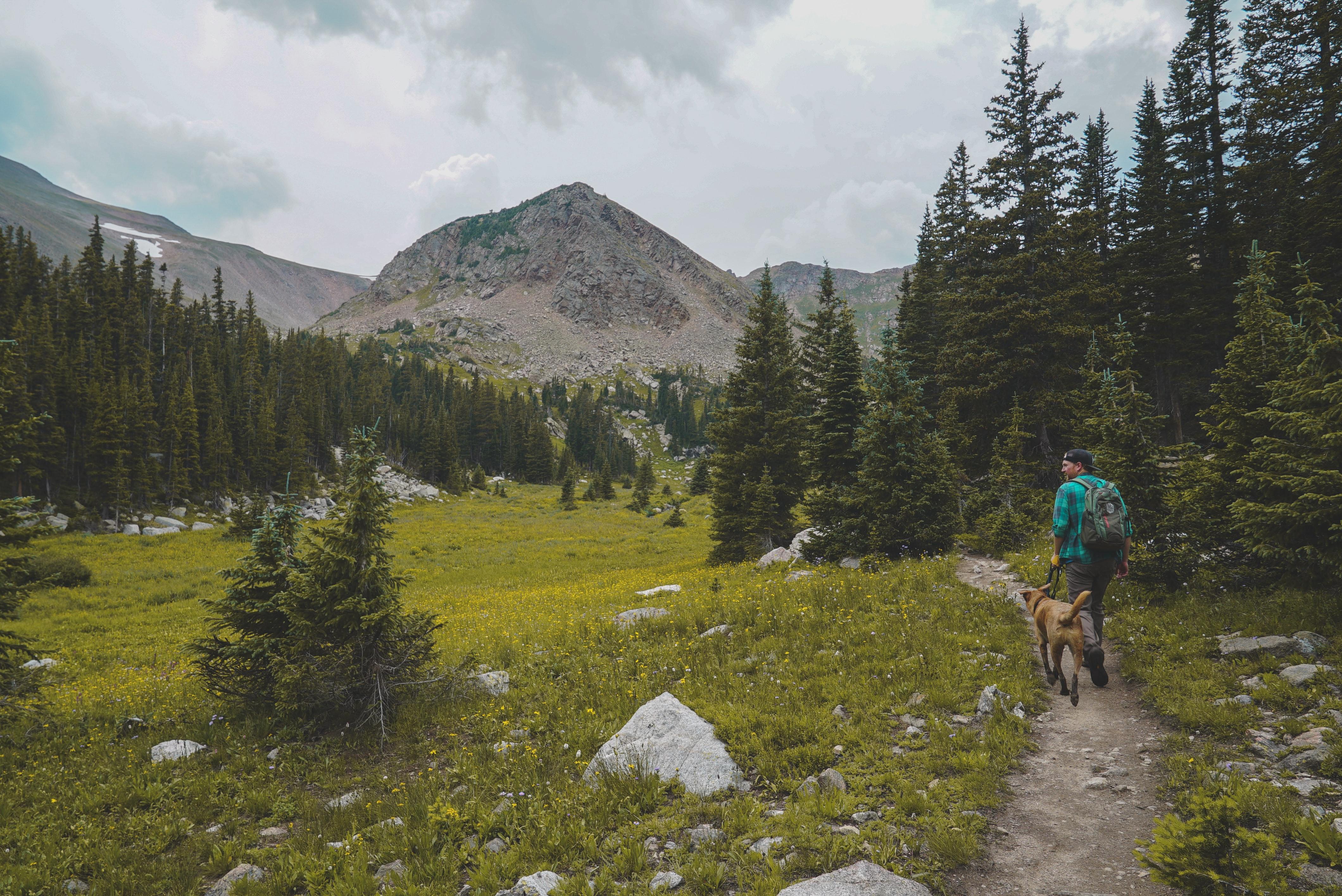 The 10 Best Dog Hikes In Utah