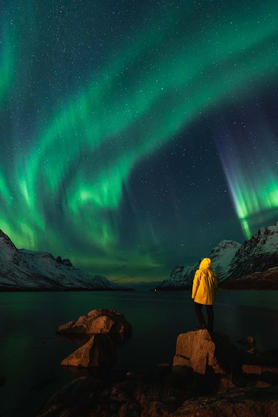 Mann nyter nordlyset i Ersfjorden