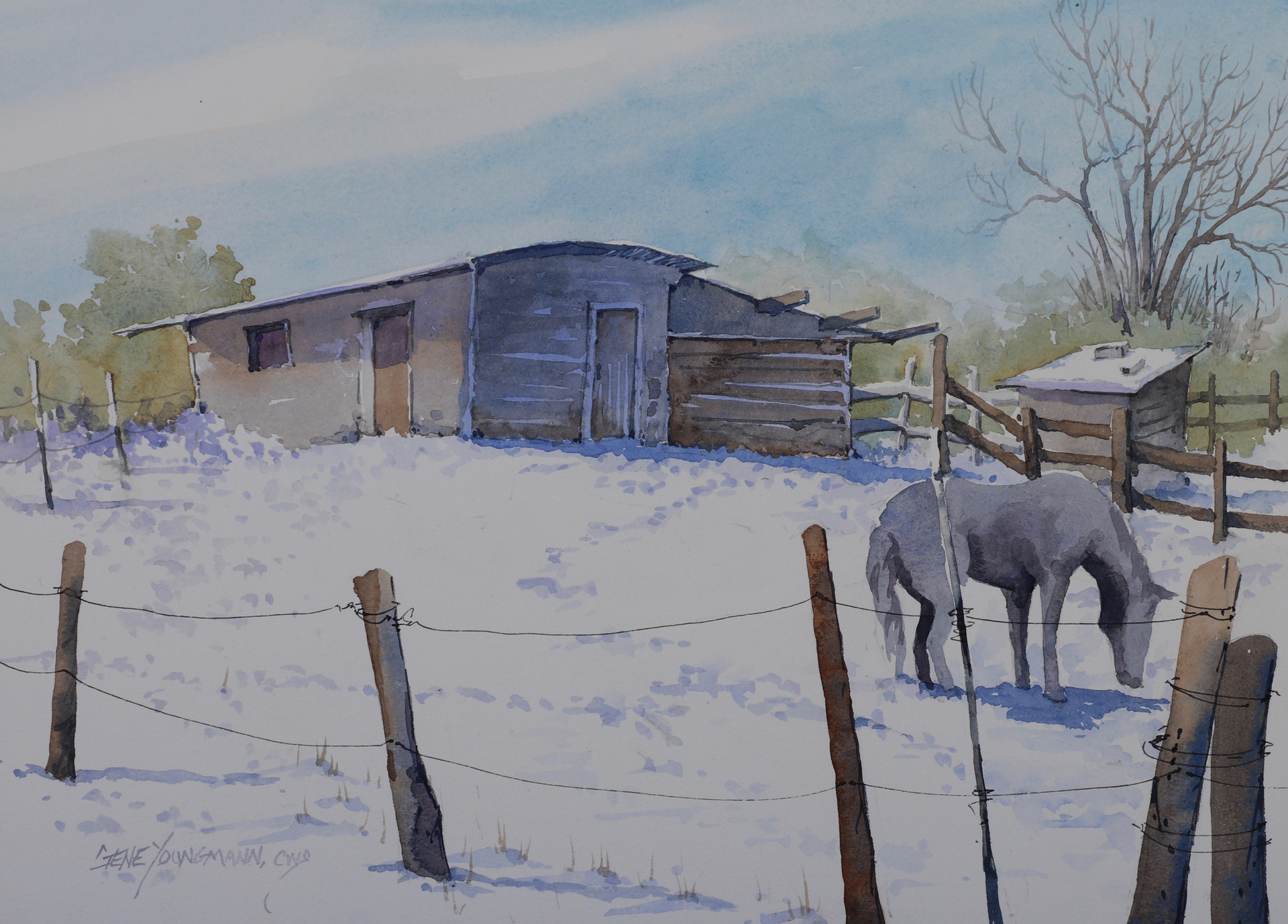 Snow In The Corral