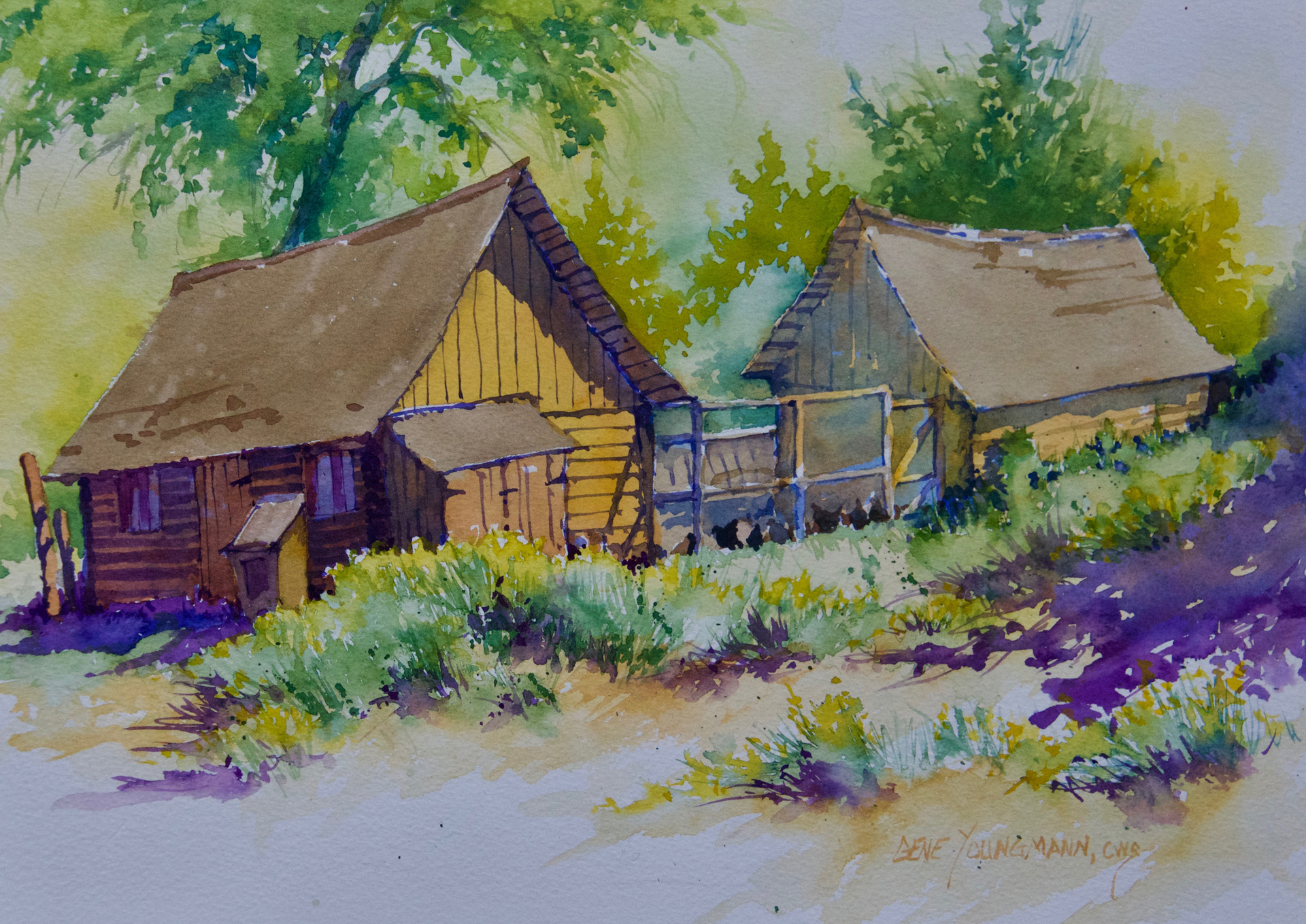 Painting #62 Barn & Chicken Yard