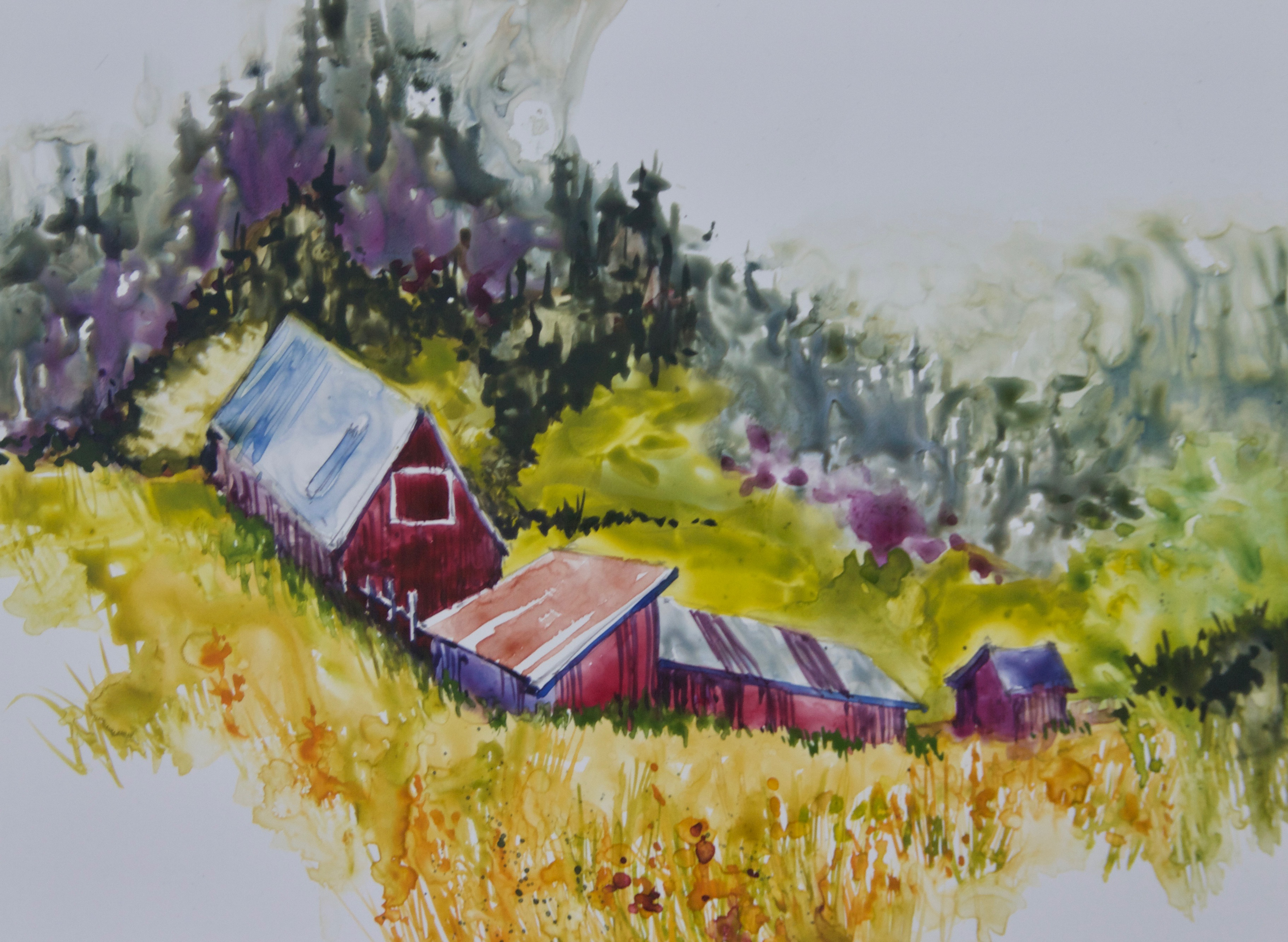 White Ranch Barns