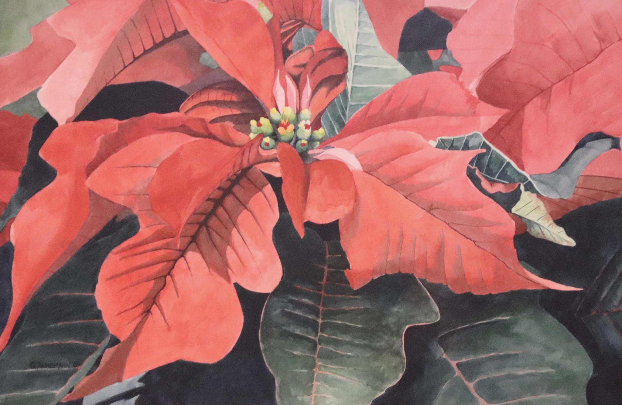 Painting #16 Pointsettia Portrait