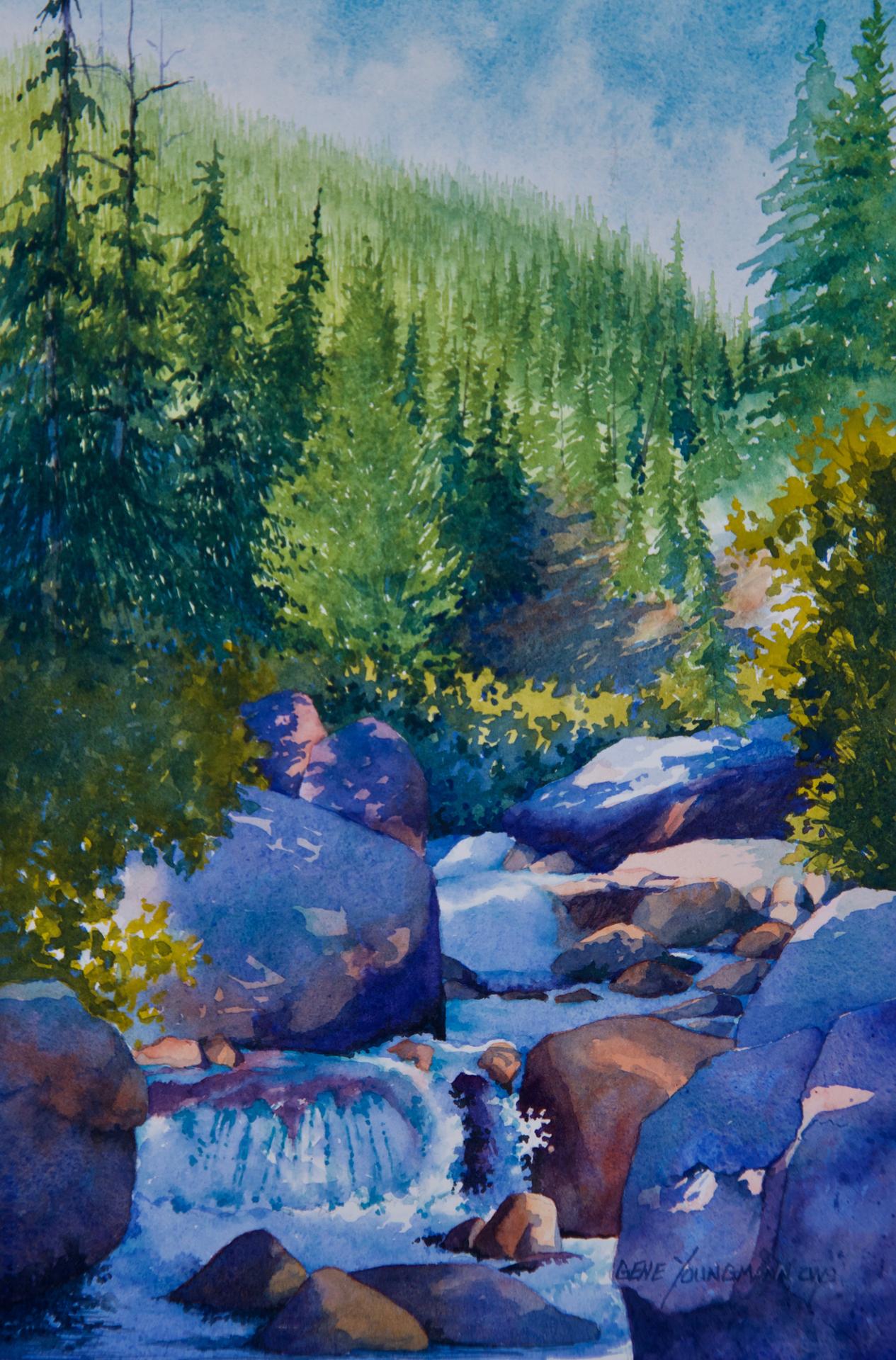 Painting #71 Copeland Falls