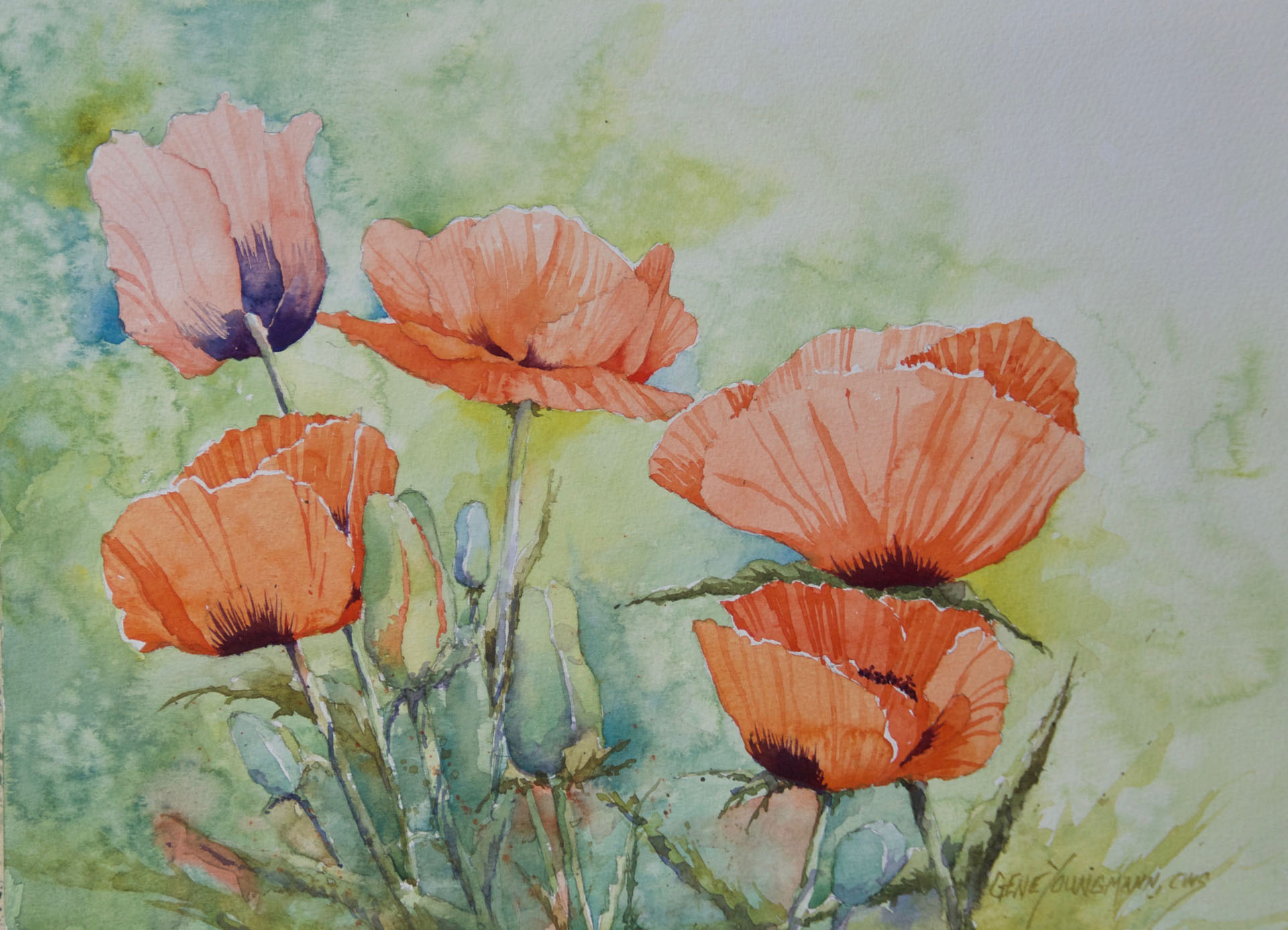 Fifth Level Poppies