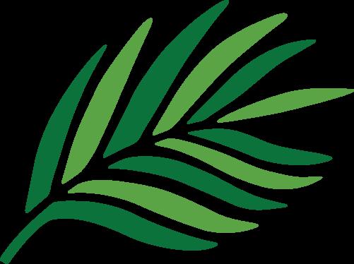 Rainforest partnership project logo