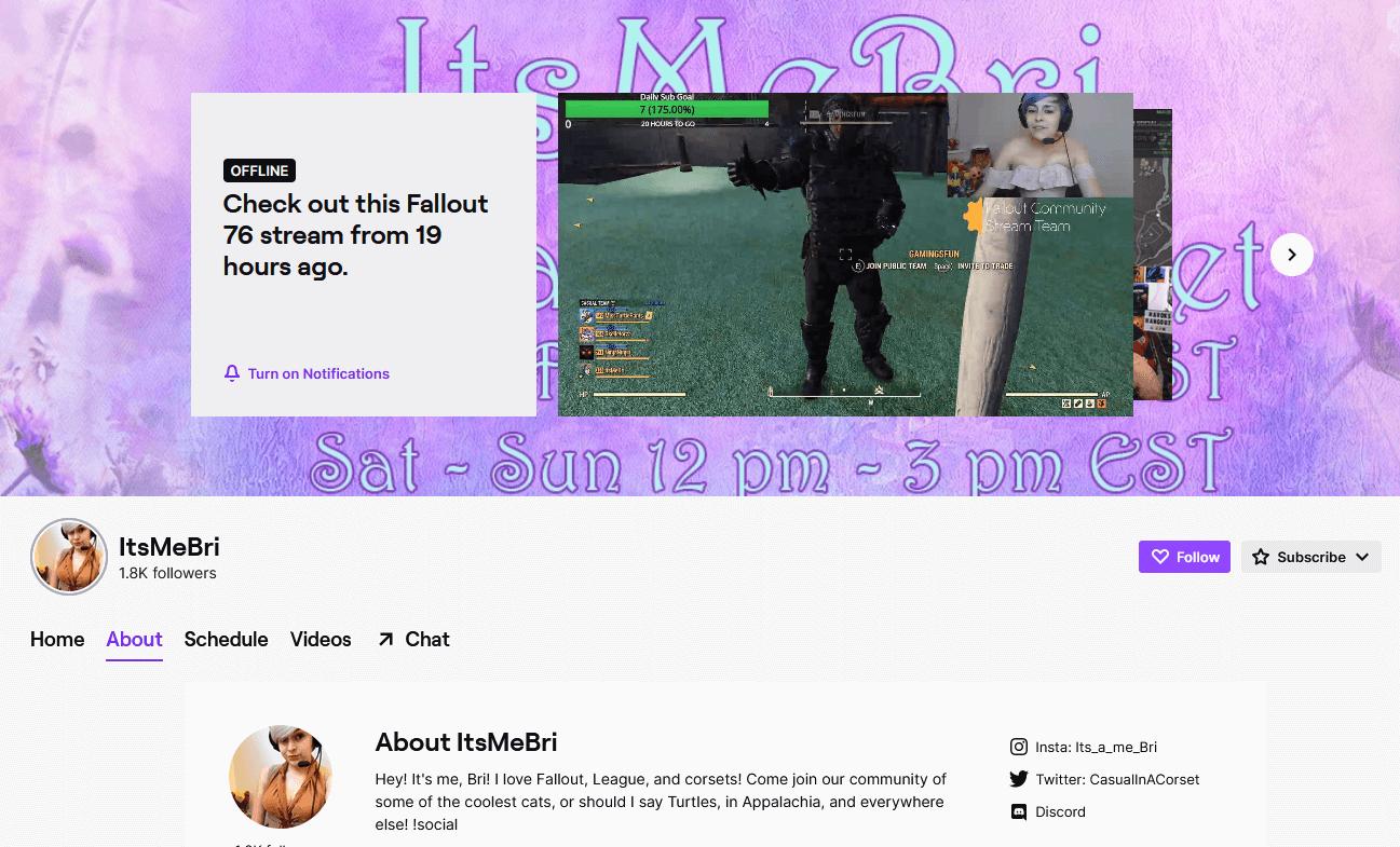 Screenshot of ItsMeBri Twitch Channel
