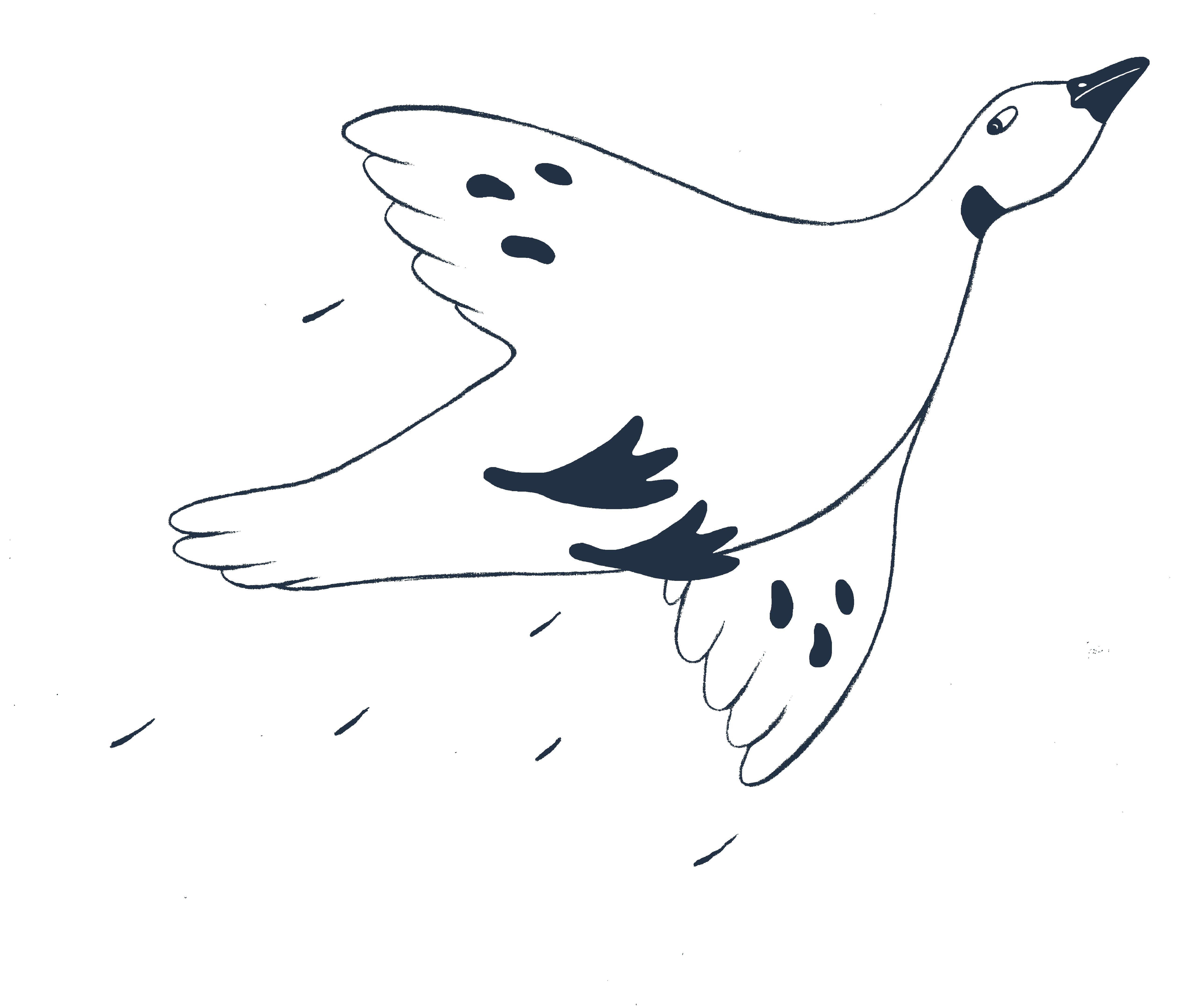 Fugl ikon