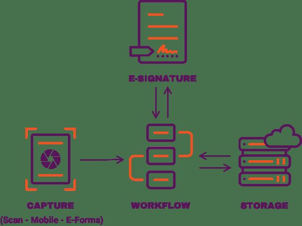 visual diagram of Vasion product suite.
