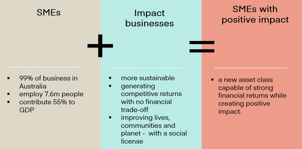 Graphic displaying 'SMEs plus Impact businesses equals SMEs with positive impact'