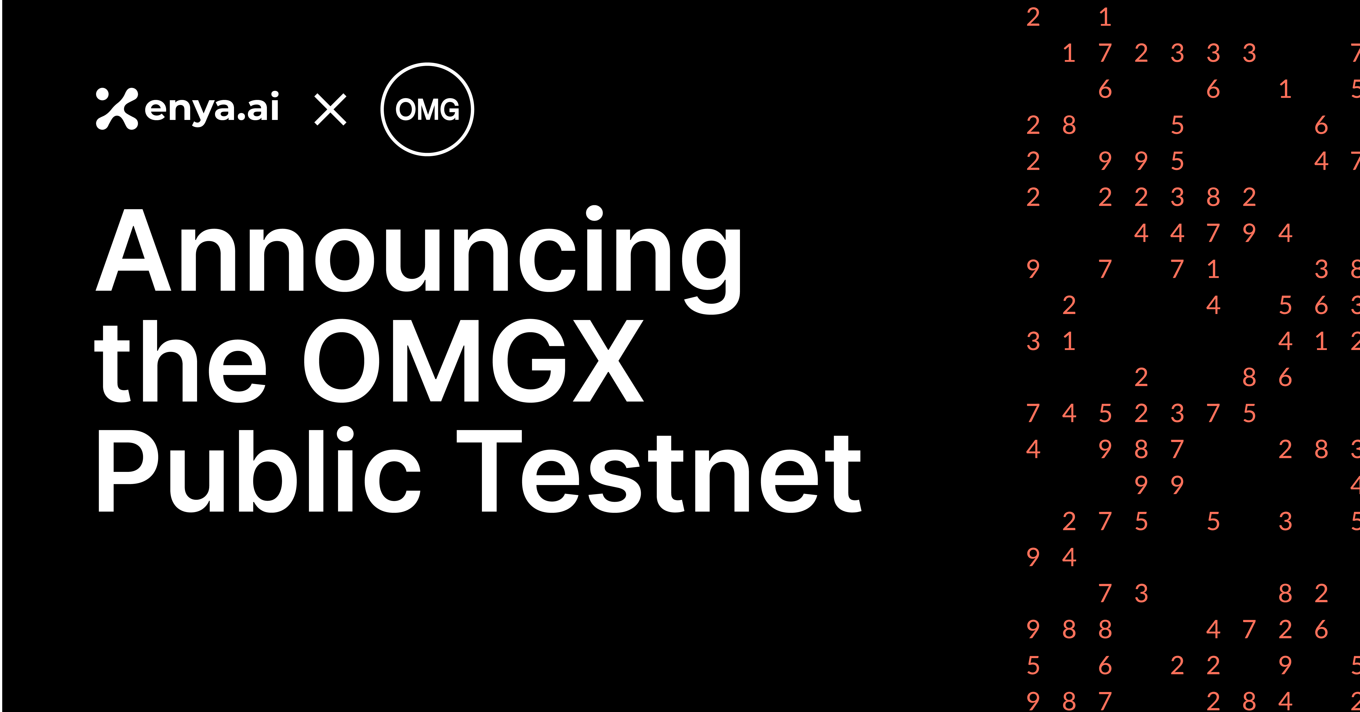 Enya Launches Public Testnet of OMG Network's Ethereum Scaling Solution – OMGX