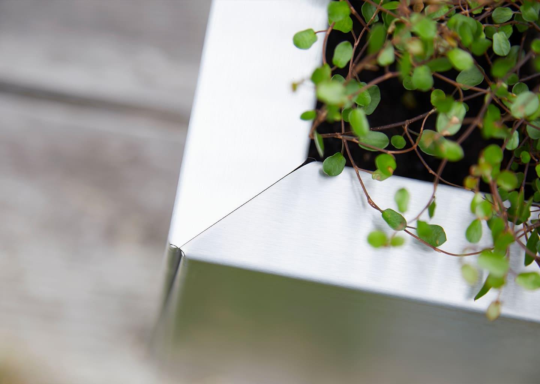 Beispielbild Planto