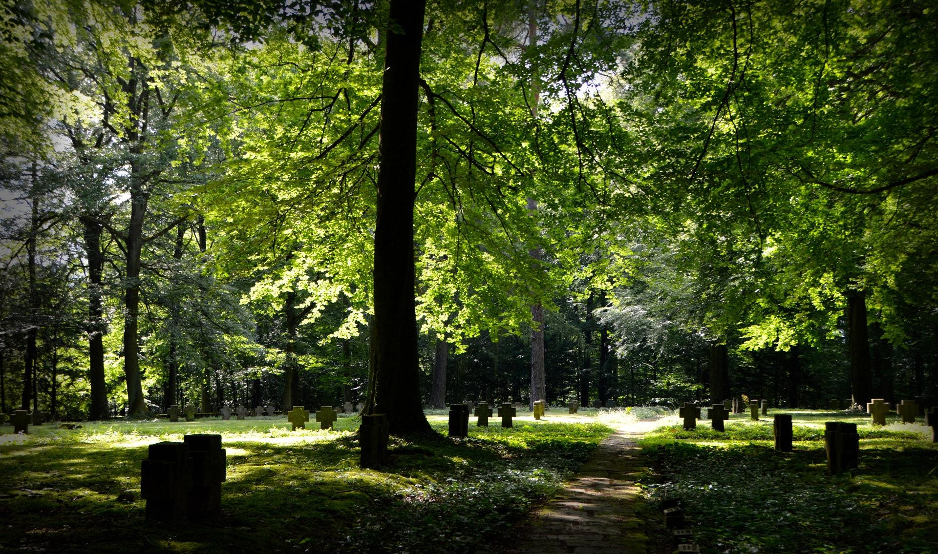 Sobre Parques e Cemitérios