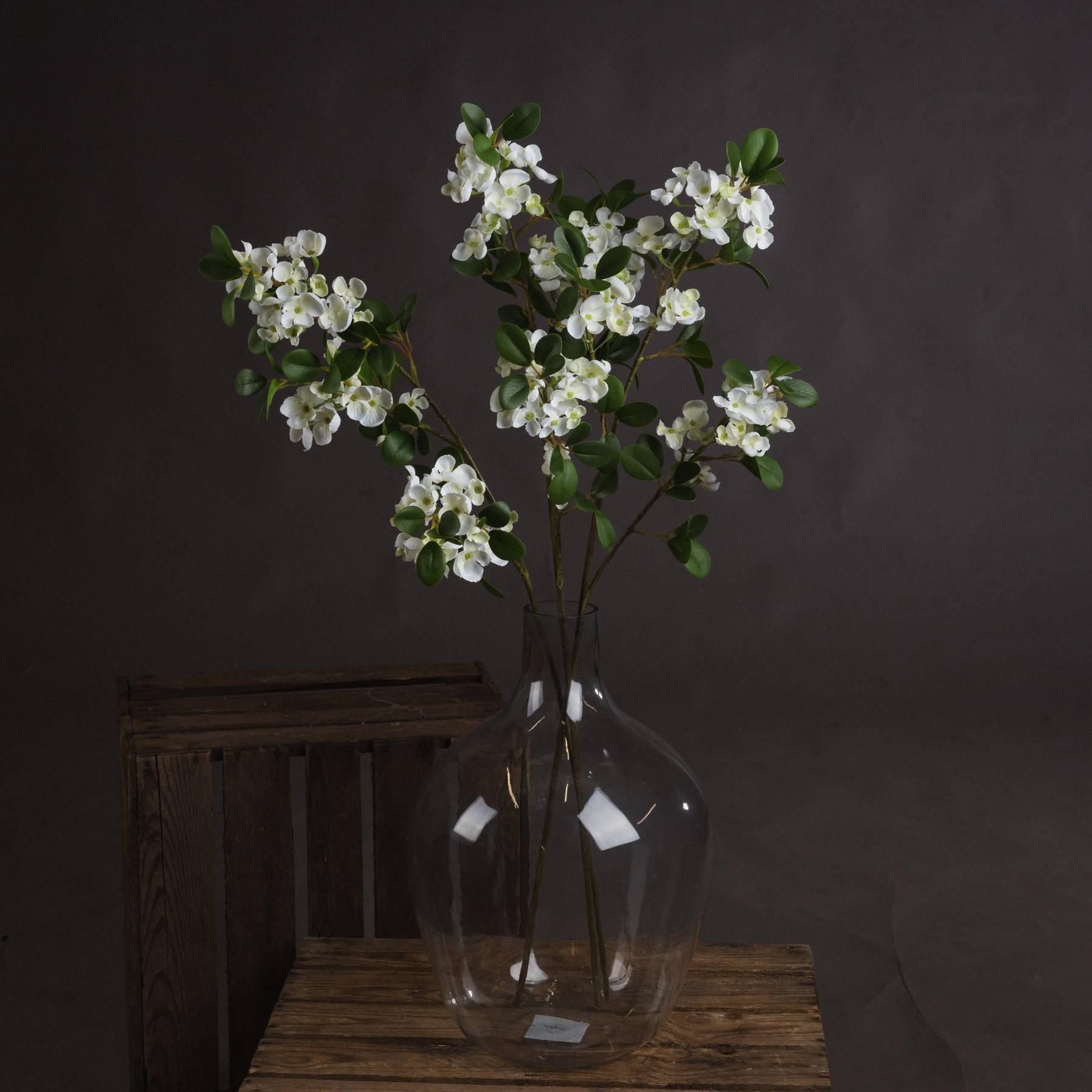 White Spring Mock Orange Flower