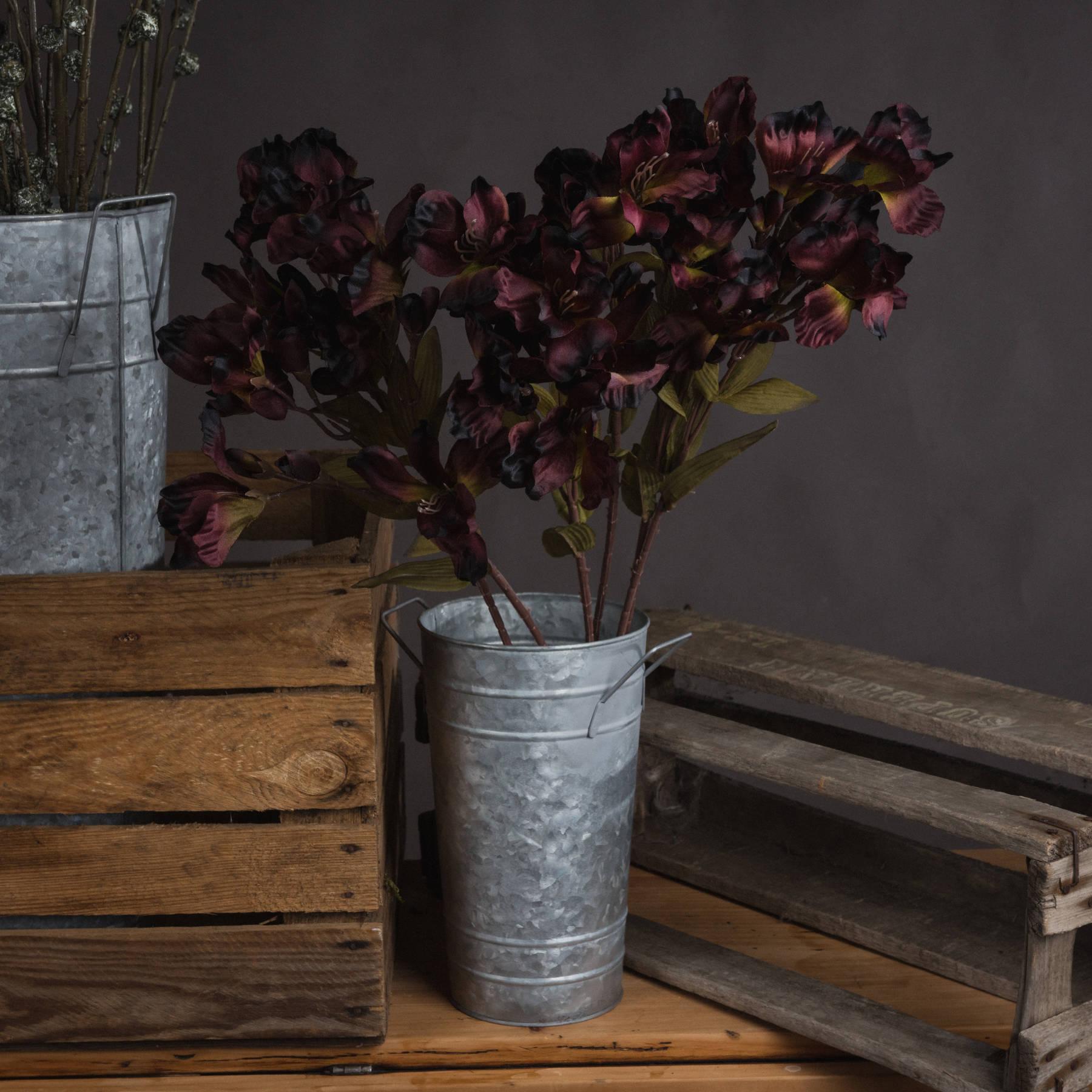 Chocolate Alstroemeria Lily Spray
