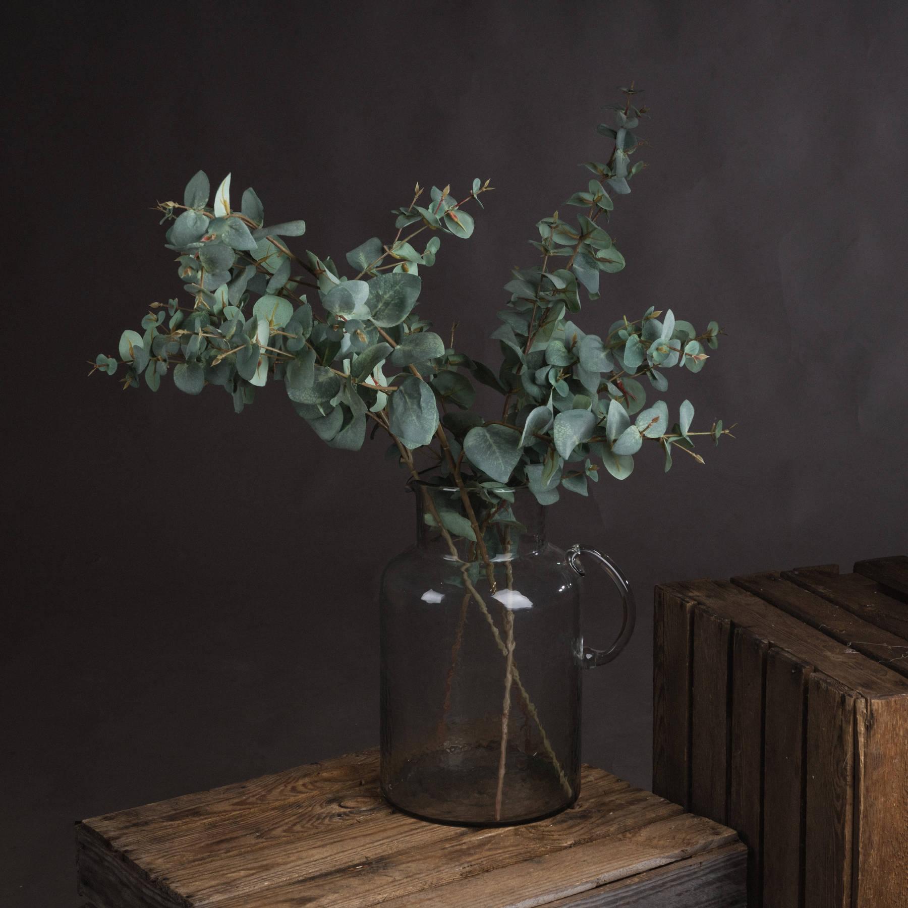 Variegated Eucalyptus