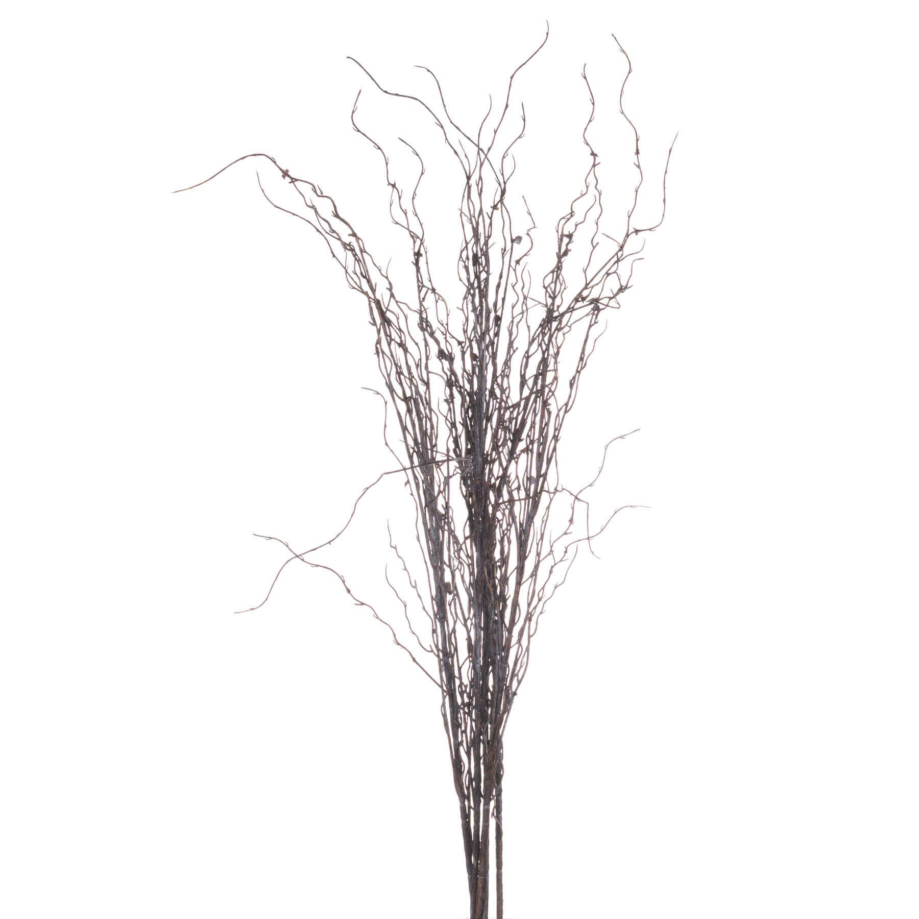 Branch Spray